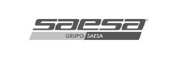 Saesa